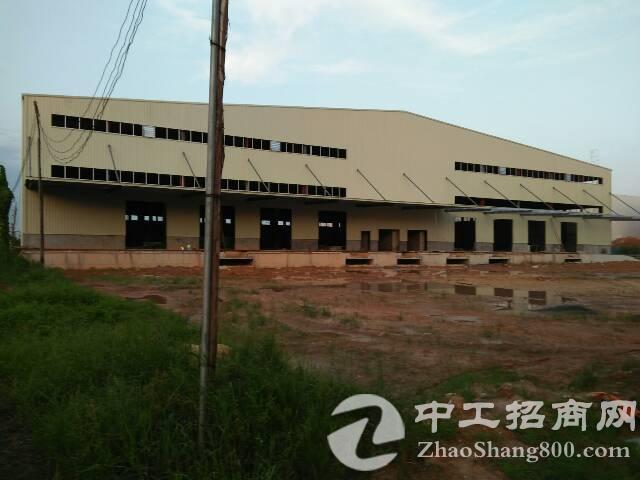 茶山镇物流大型仓库