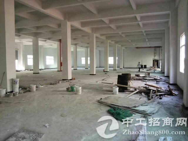 大冚原房东标准一楼1000平方