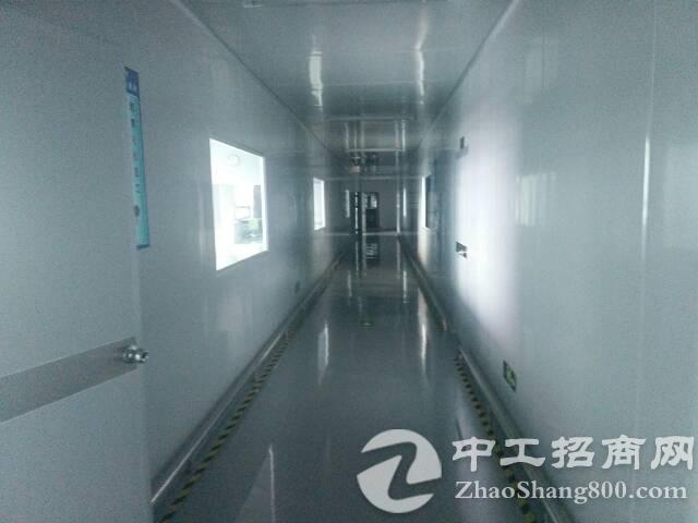 福永西乡黄田大型工业园楼上一整2700 平方米