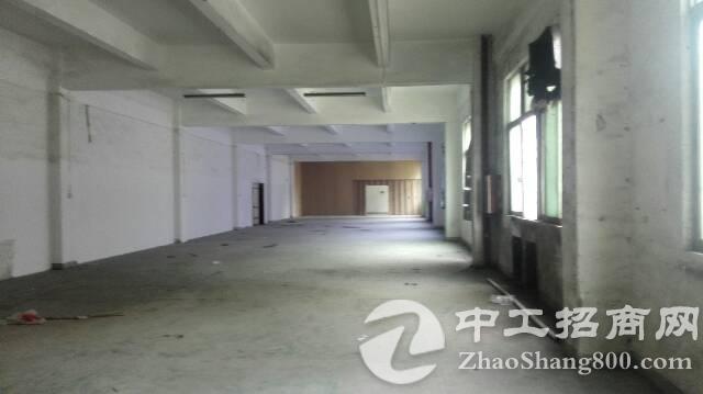 龙华清湖地铁口附近一楼1200平厂房出租