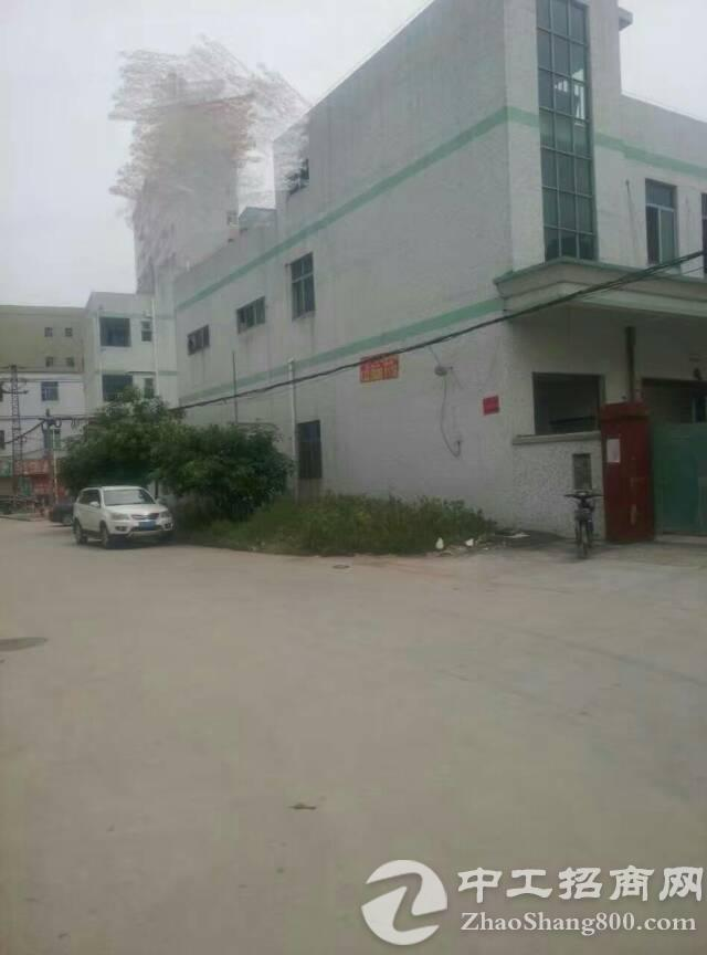 南光高速出口 原房东《独门独院》2层2200