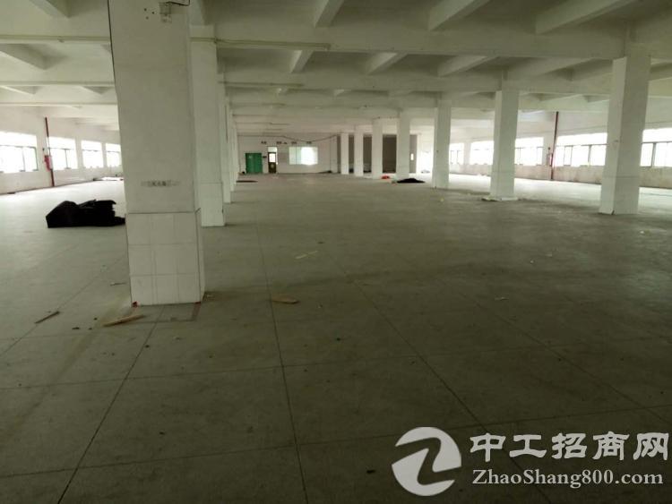 常平新出11000平方标准三层楼房独院九成新