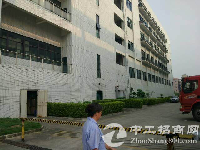 松岗罗田新出楼上厂房1400平方米带装修低价招租