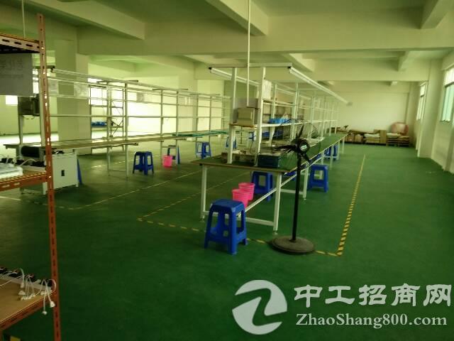 虎门镇沿江高速附近新出三层小独院3000平方,水电齐全-图4