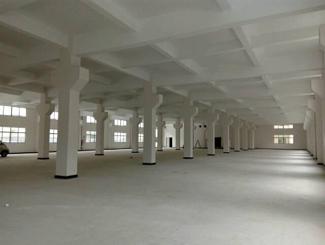 茶山全新高标准独院厂房15000平米出租-图6
