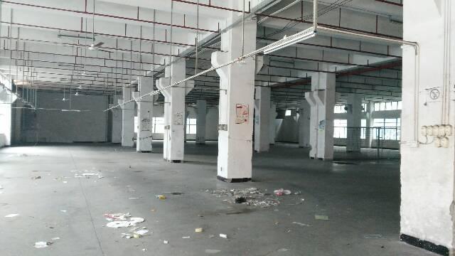西乡固戍新出一楼整层3300平方有红本厂房出租,