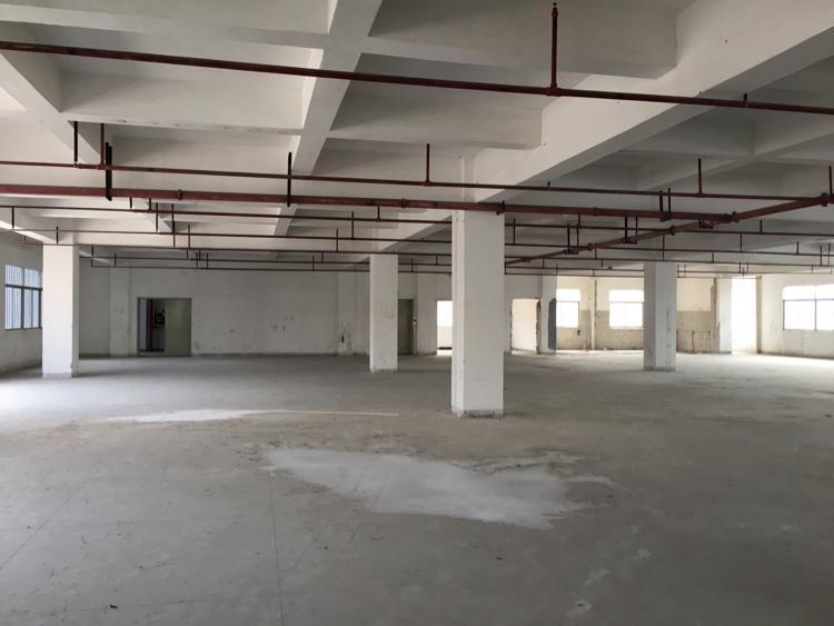 东城新出厂房34F3600平方-图3