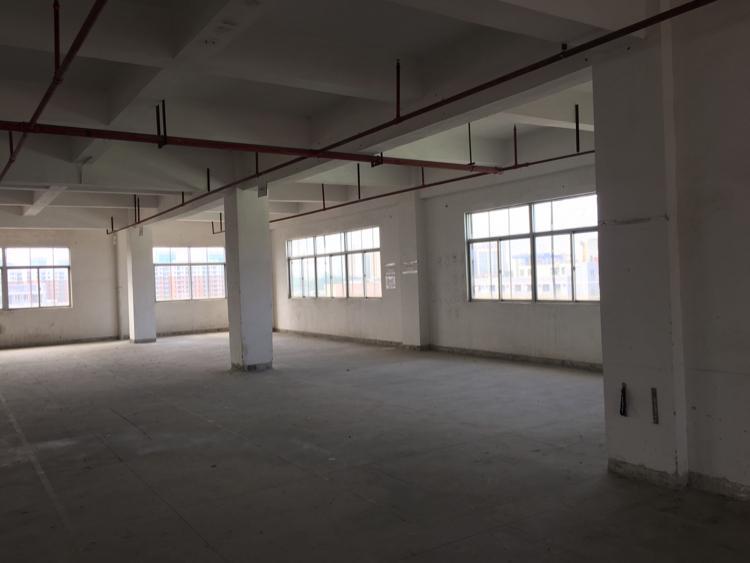 东城新出厂房34F3600平方-图2