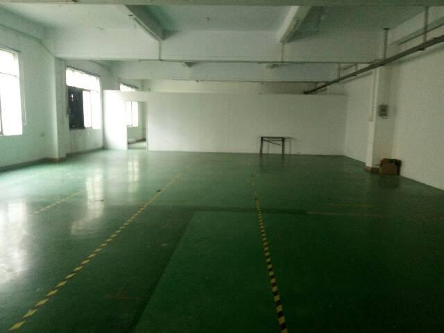 龙华天虹商场附近700平精装修厂房招租拎包进驻
