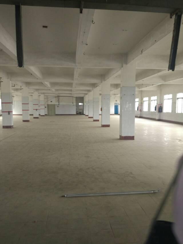 松岗燕川新出一楼厂房2000平方米低价招租