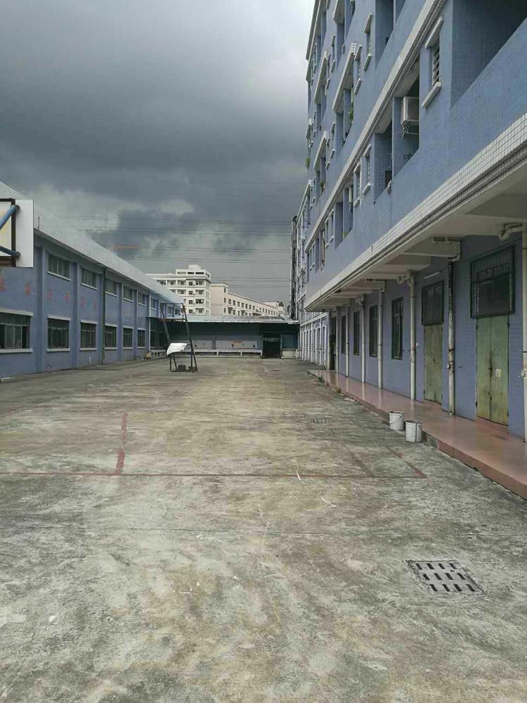 常平镇九成新2800平方单一层独院厂房出租