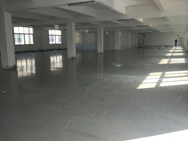 松岗大田洋新出独院厂房4500平方米低价招租