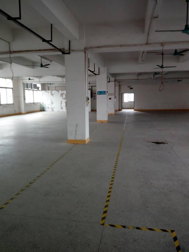 横岗新出一楼厂房1500平米出租