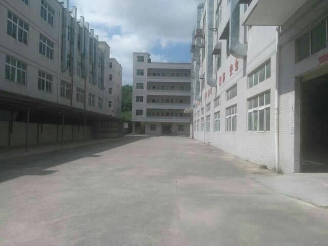 深圳独院厂房出售