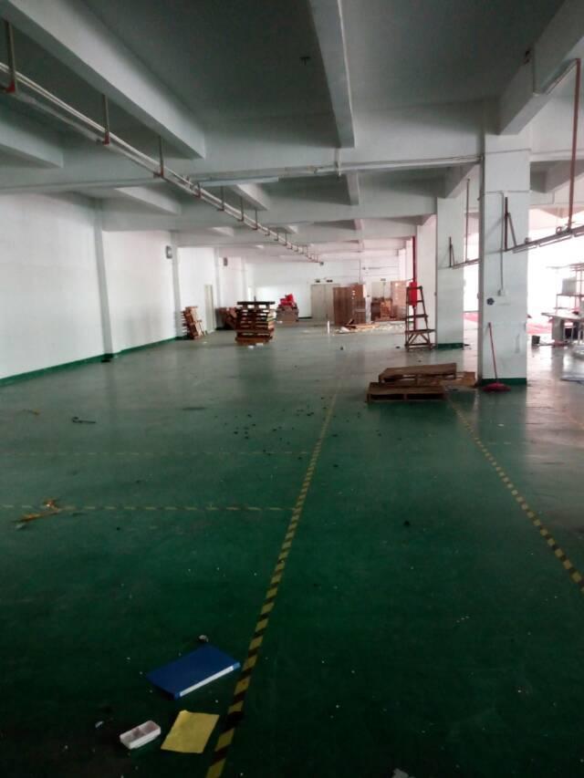 横岗新出厂房1350平米出租