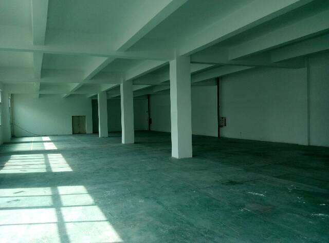 坪山大工业区精装修厂房