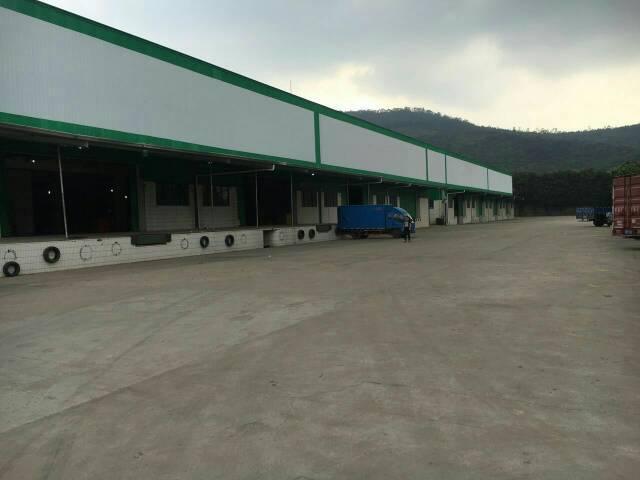 清溪11000平方带10吨行车钢构厂房
