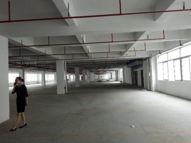 石岩塘头新厂房一楼1360平方出租