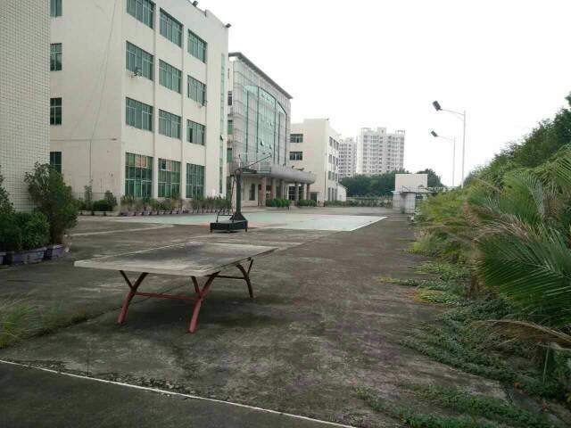 九成新独院厂房1-3层10000平米,一楼6.5米,