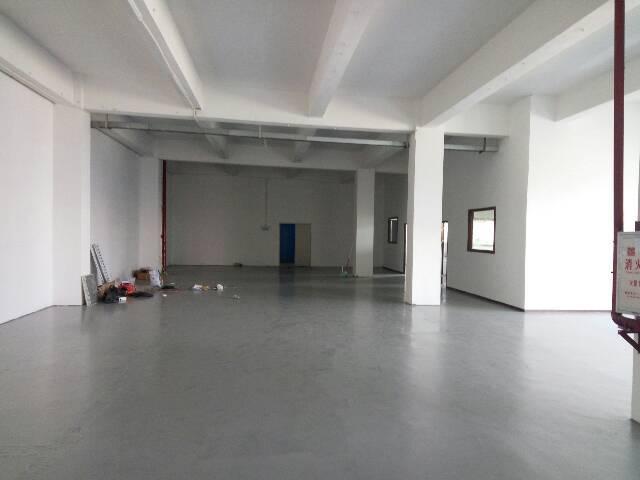 坪山新区新出楼上一整层厂房