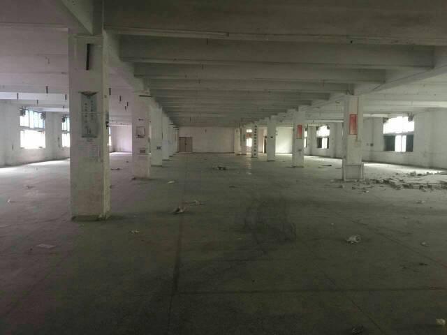 福永和平新出独栋4层9800平方