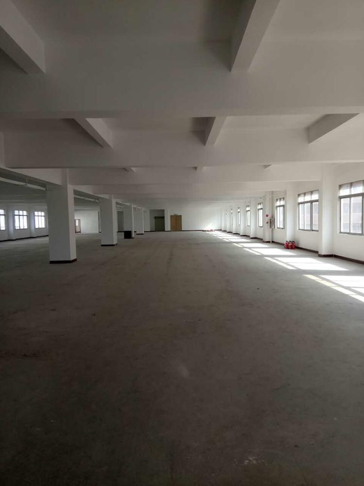 东城标准厂房一楼出租