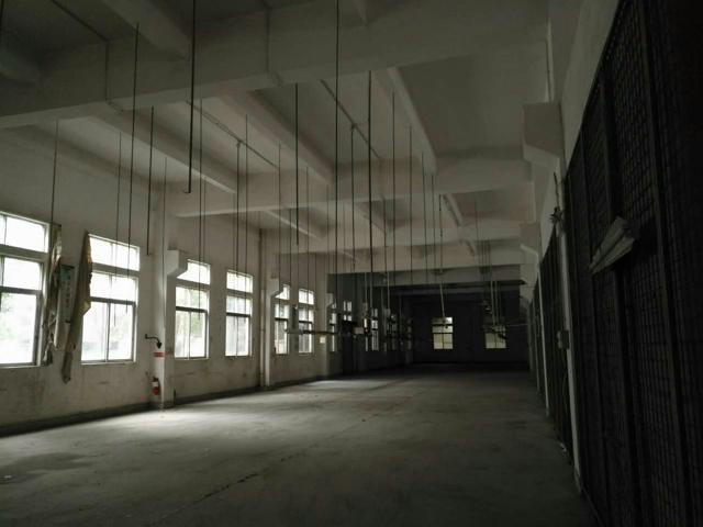 横沥原房东一楼带牛角厂房1200平米