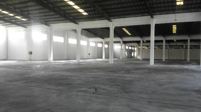 东莞新出可做物流单一层厂房