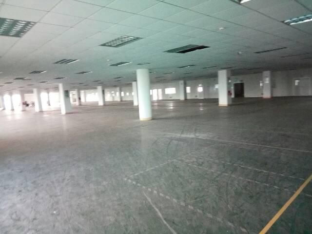 横沥镇厂房2000平方,带现成装修办公室,现成水电