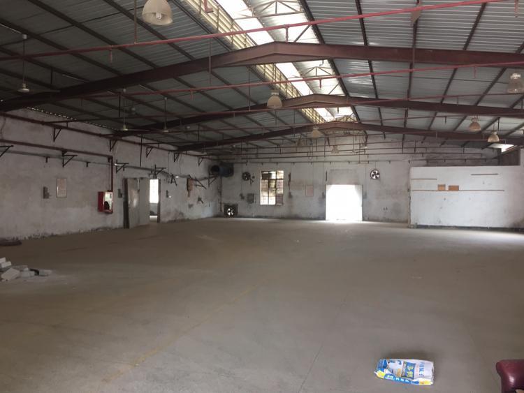 横岗一楼厂房 滴水五米 钢架结构
