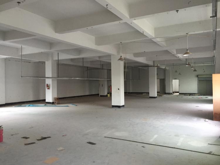 安良厂房 1350平电梯 交通方便
