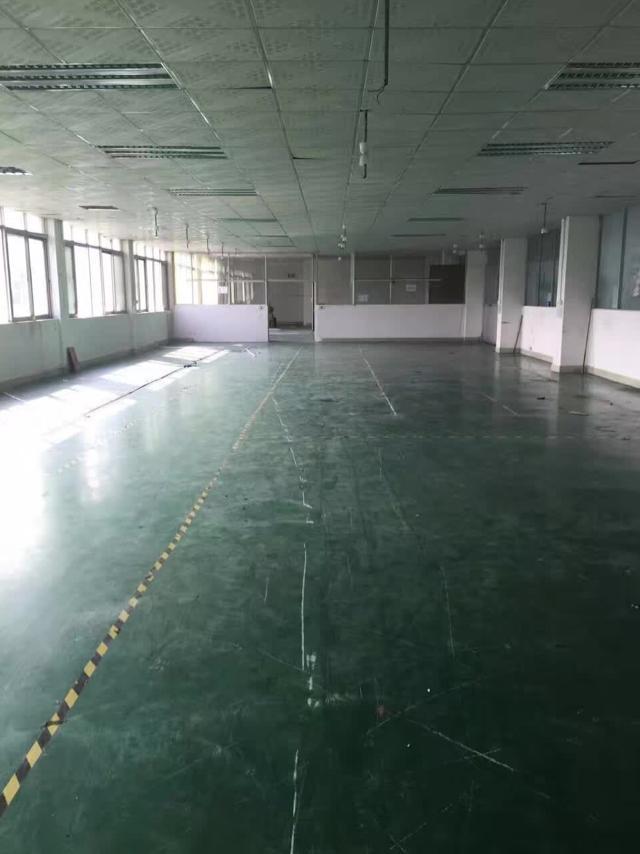 塘厦新出楼上800平米带现成装修厂房招租