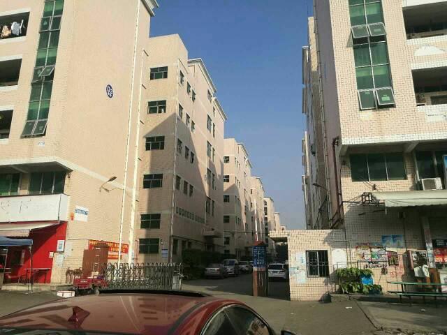 福福宿舍楼改公寓出租2900平米