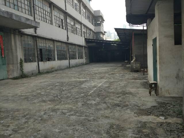 7元独院厂房-图3