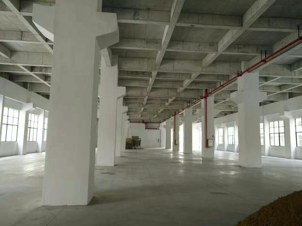 大朗松山湖附近富民工业城新出重工业厂房33000平米配电2000千瓦
