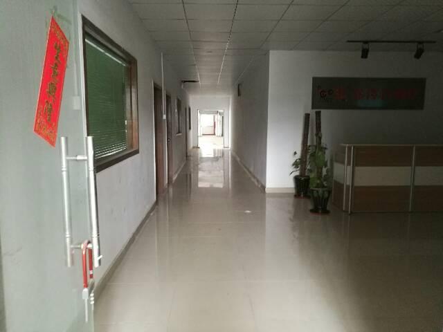 公明李松朗原房东 新出楼上精装修免转让费1200平米 11