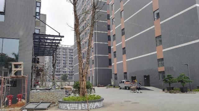 松岗107国道附近全新厂房出租一楼2000平方可以分租