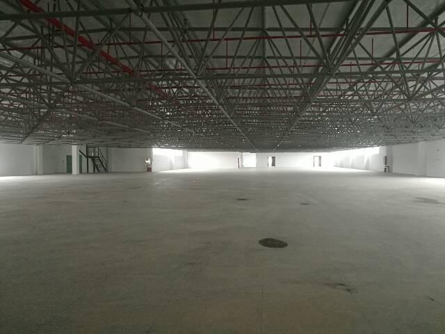 观澜3000平方钢构厂房出租
