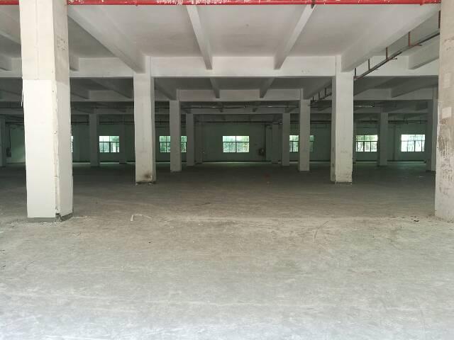 福永沿江高速出口附近新空3100平方一楼厂房出租