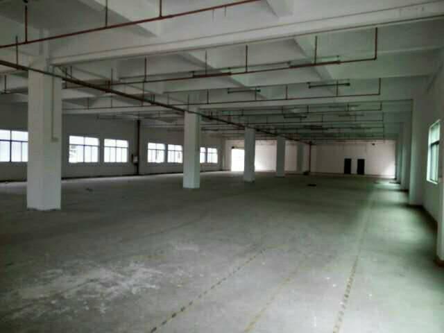 5元全新办公楼便宜出租,面积4000平方,