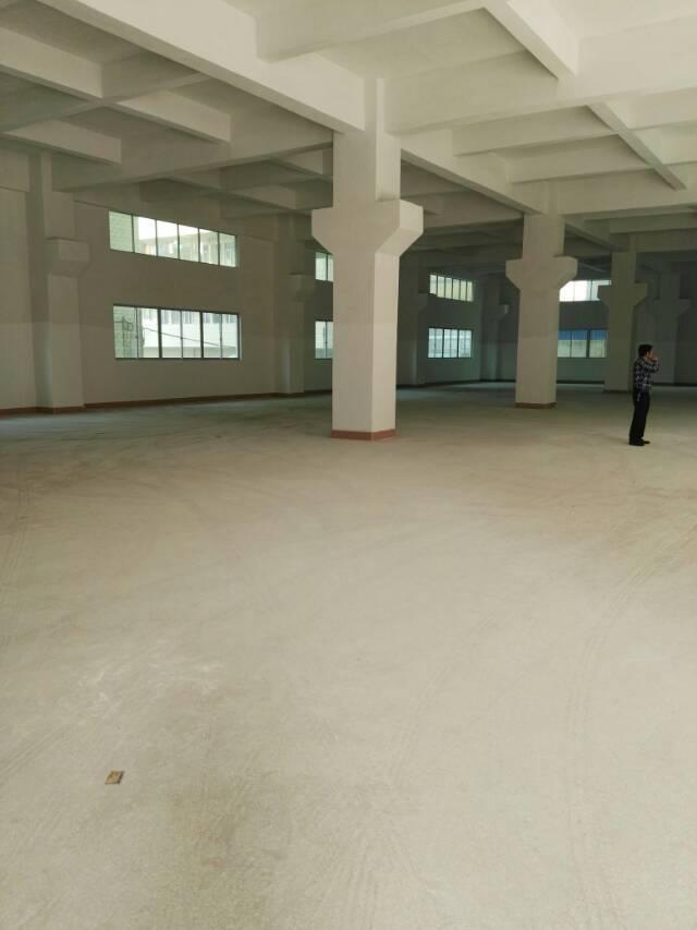 一楼6米带牛腿厂房出租有现成的的办公室水电齐全