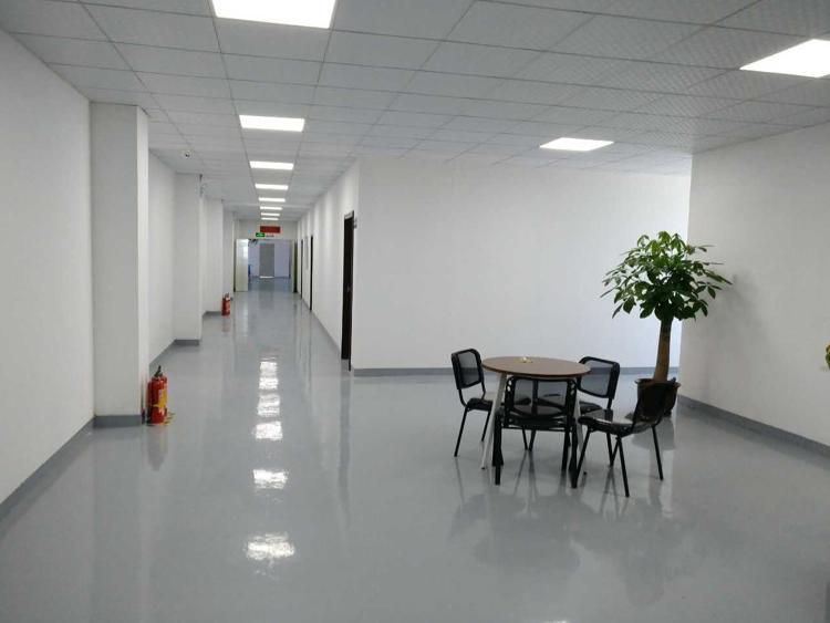塘厦小面积600平米带装修厂房9元招租