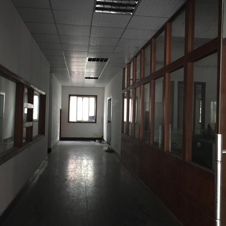 横沥镇新出一楼带办公室厂房600平方出租