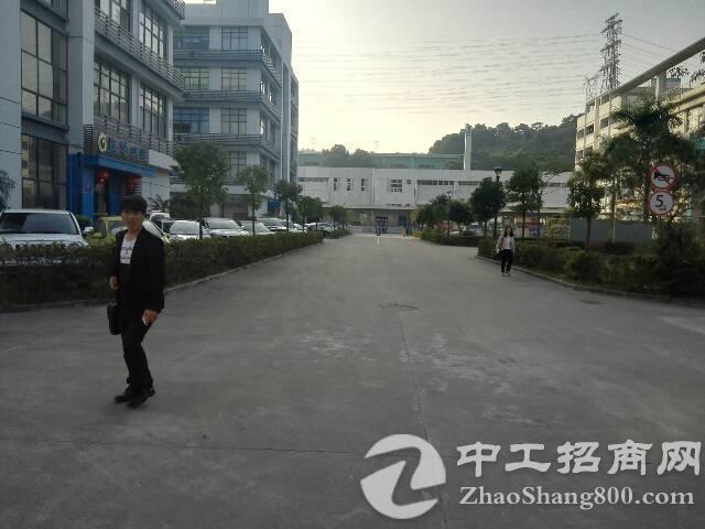 观澜新出标准厂房2556平急招租中-图5