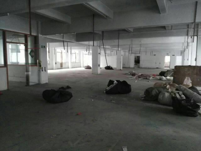 虎门白沙一楼500平方带装修招租