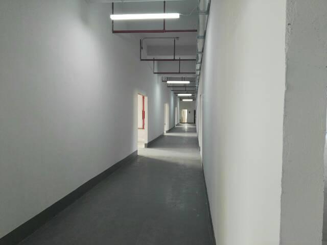 松岗新出可做食品有市政管道独院1~4层4000平米厂房出租