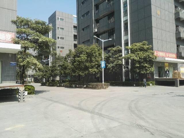 龙华福龙路出口花园式厂房红本9500平1-2层-图6
