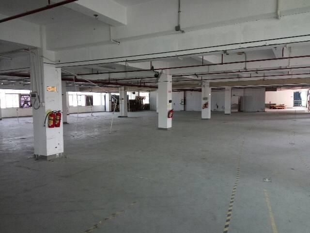 大鹏新区新出一楼带装修厂房