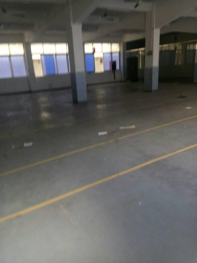 观澜福民福前路新出厂房1~2楼,1820平
