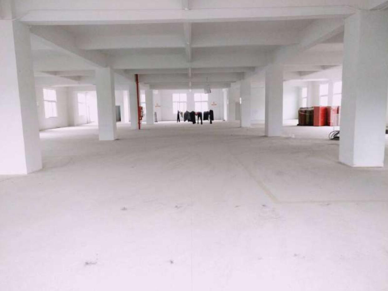 南光高速出口新出独院4200平米